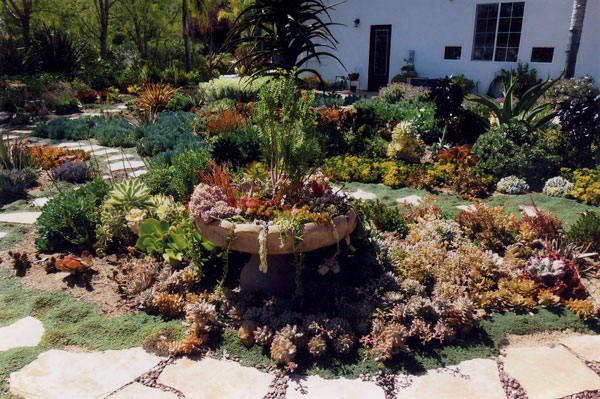 Project gallery living designs by linda for Low maintenance year round plants