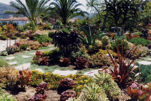 Poway 1 Garden   Photo 8 Of 9